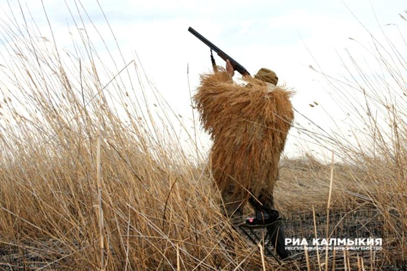 Охота на гуся в Калмыкии в 2017 году, осенью, в Элисте, весенняя охота