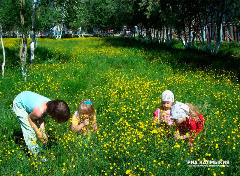 Фото экология для детей