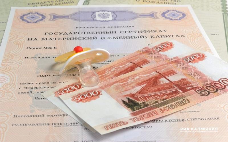 ВКалмыкии 17 семей получают ежемесячные выплаты изсредств материнского капитала