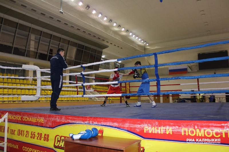 Сегодня в Элисте состоится официальное открытие чемпионата России по боксу